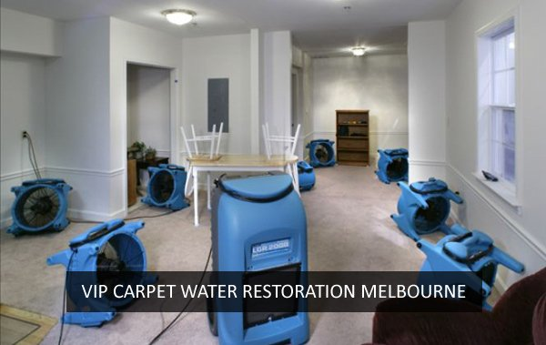 Carpet Water Restoration Bayswater North