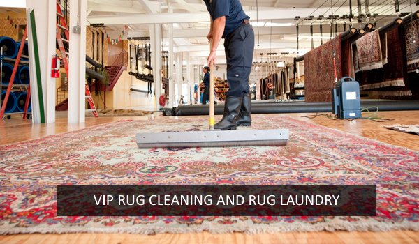 Rug Cleaning Eurobin
