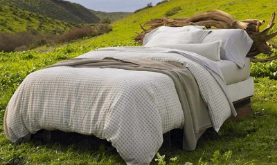 Eco-friendly Mattress Cleaning Solutions