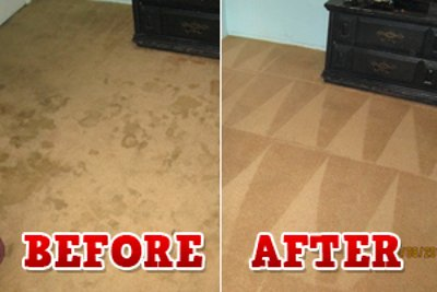 Pet Dirt Removal From Carpet