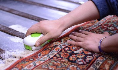 Wool Rugs Cleaning Eurobin 3000