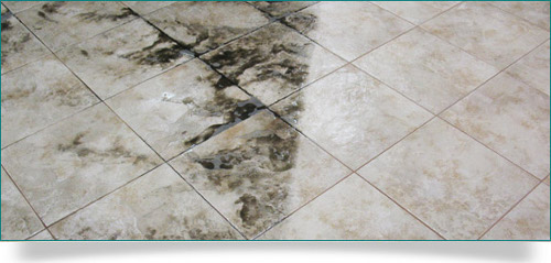 Tile and Grout Cleaning Buninyong