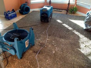 Carpet Water Restoration