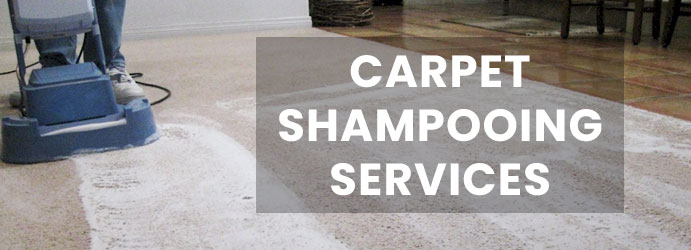 Carpet Shampooing Service