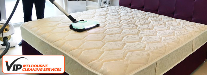 Air Mattress Cleaning