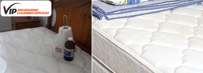 Mattress Cleaning With Hydrogen Peroxide and Detergent