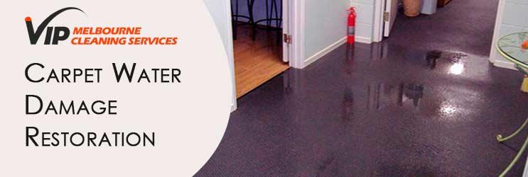 Carpet Water Damage Restoration